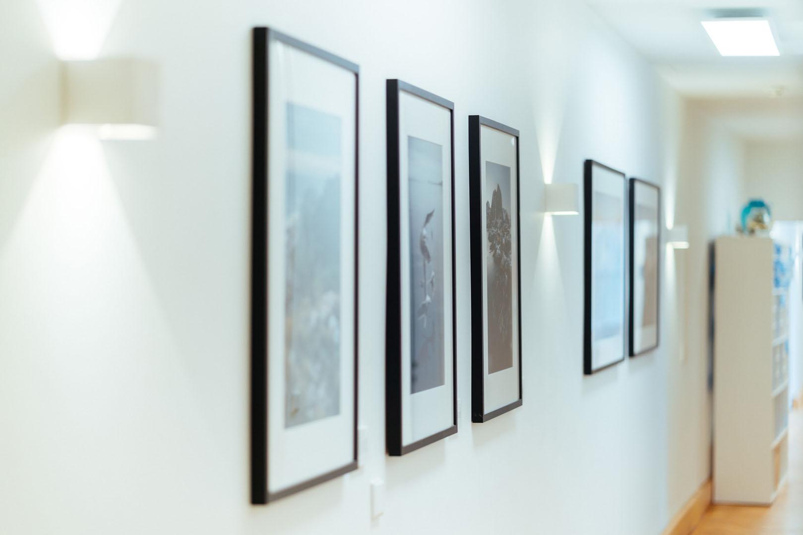 Bildergalerie im Flur der Physiotherapie physioconcept